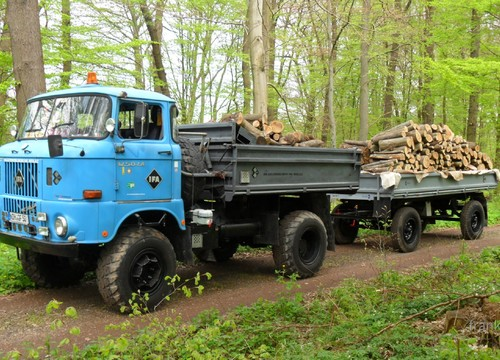 Holztransport im Harz