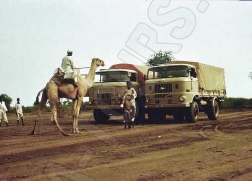 IFA LKW L60 und W50 unterwegs in Nordafrika